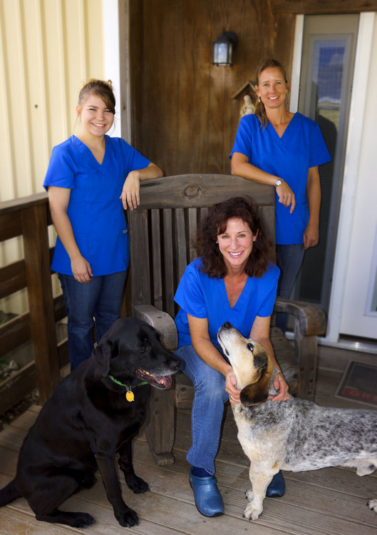 Dr. Meg Pope Veterinery Services